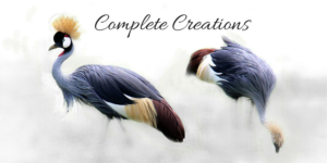 conscious creation masterclass